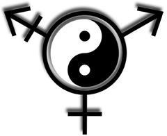 TransgenderYinYang